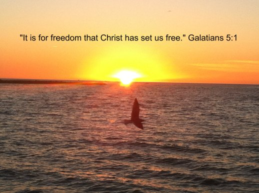 Freedom Pic